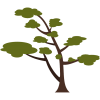tree icon for stacy sells resource page